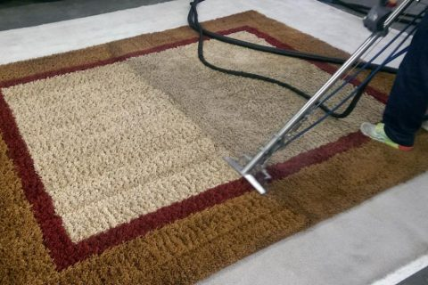 Rug in a office in orlando